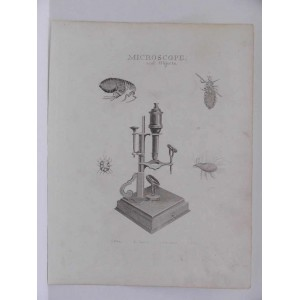 MICROSCOPE AND OBJECTS